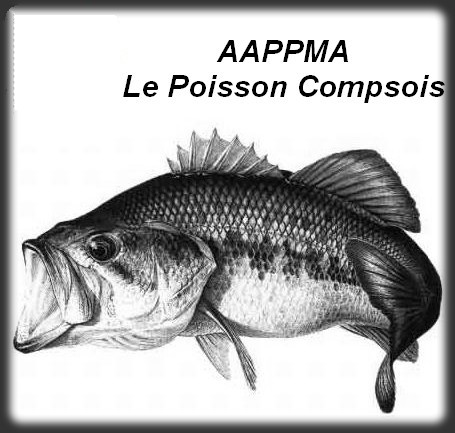 Aappma comps