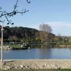 Le Lac des Moulins